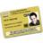 Gold CISRS Card